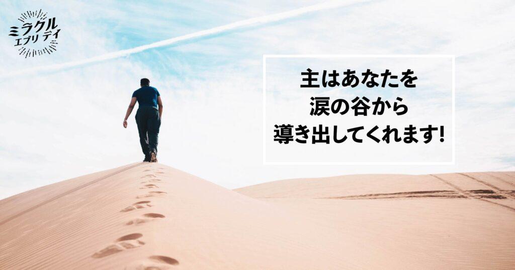 AMED_image_6.28