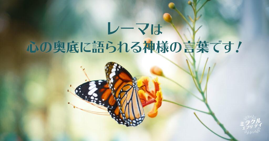 AMED_image_14.22