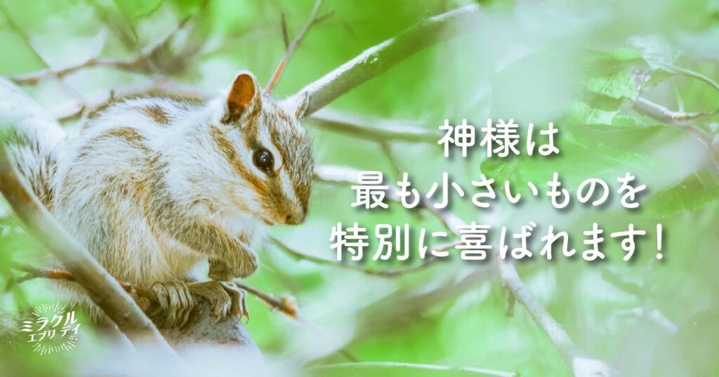 AMED_image_18.5